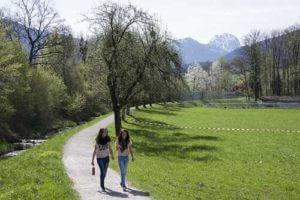spring walk.jpg